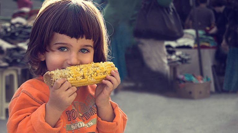 Top 7 Genetically Modified (GM) Crops