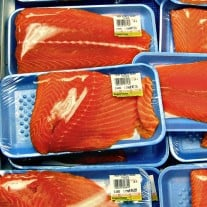 FDA Expected To Approve Genetically Modified Salmon