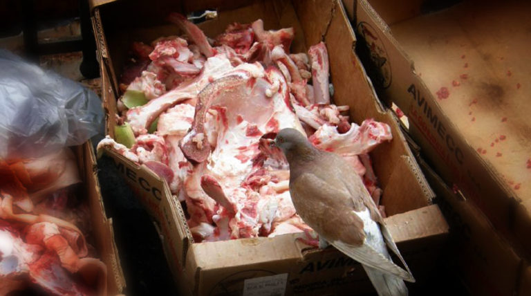 Your Meat Might Be Made From Glued-Together Scraps