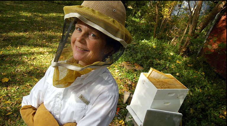 Could L.A. Become A Honeybee Mecca? The Backwards Beekeepers Are On It