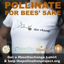 Hand-Screened Organic <br /> Bee The Change T-Shirt