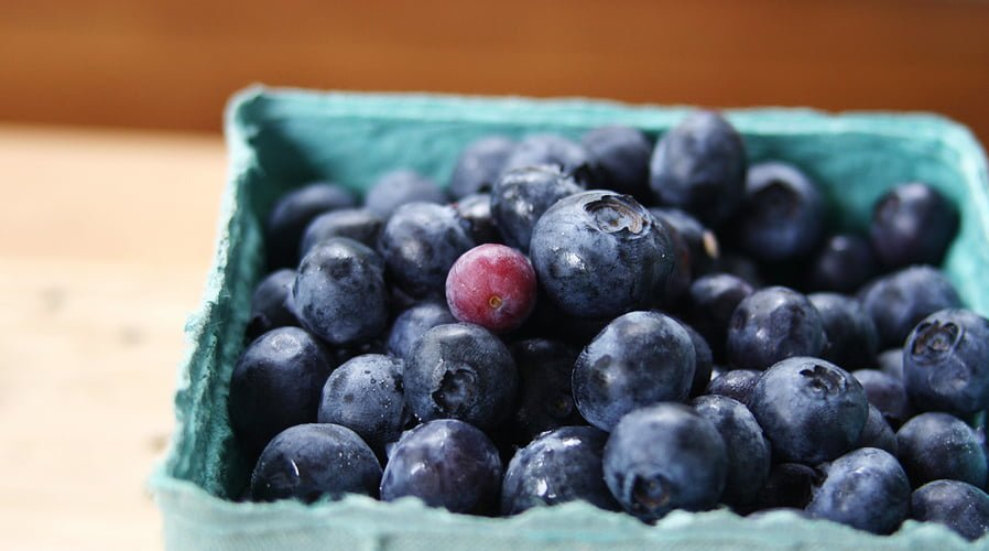 Apr1_blueberries