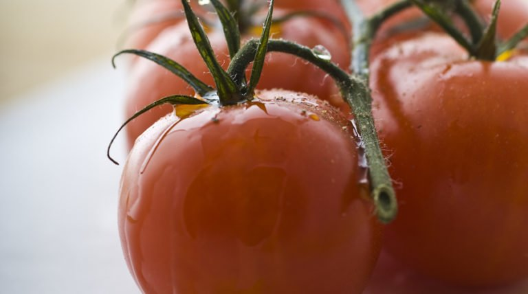 Study Shows Food Provides Sun Safety