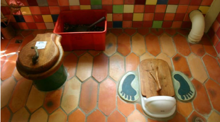 Art of Defecation: 2 Solutions For Health & Sustainability