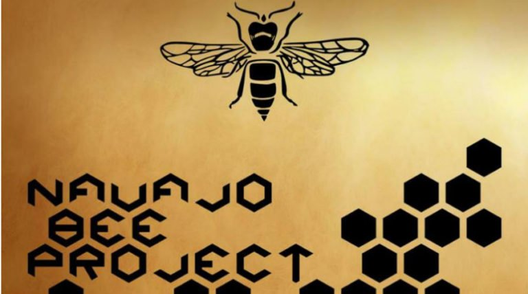 How Natural Beekeeping Can Help Save the Navajo from Uranium Poisoning