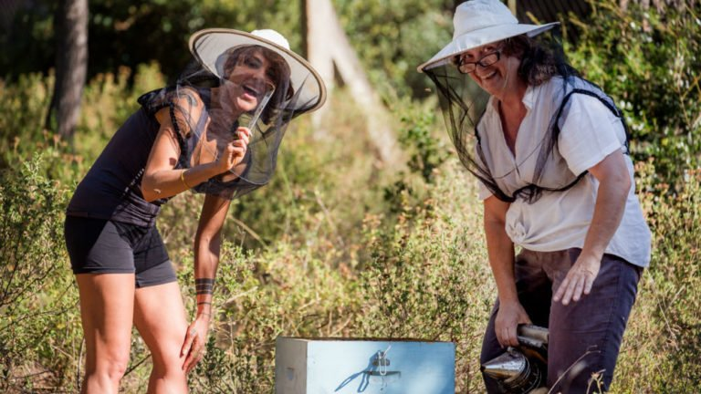 6 Things You Didn't Know About Bees in Greece