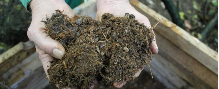 3 Environmentally Friendly Ways To Deal With Human Feces