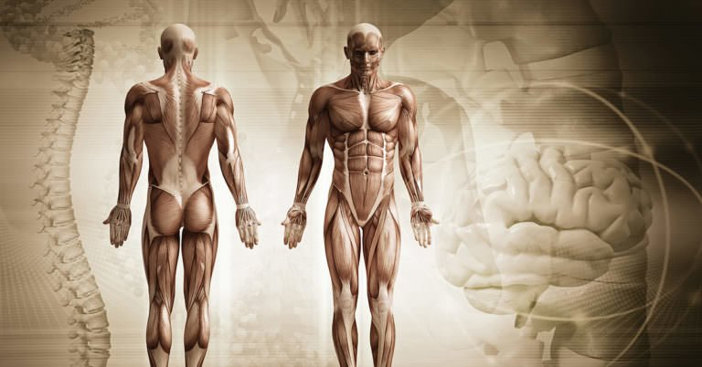 Metabolomic Medicine: How To Empower The Human Body To Heal Itself