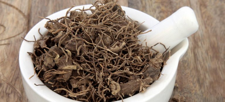5 Amazing Reasons Women Should Take Black Cohosh Root