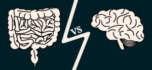 image showing gut vs brain that causes stress